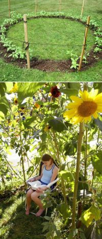 32 Cheap And Easy Backyard Ideas That Are Borderline ...