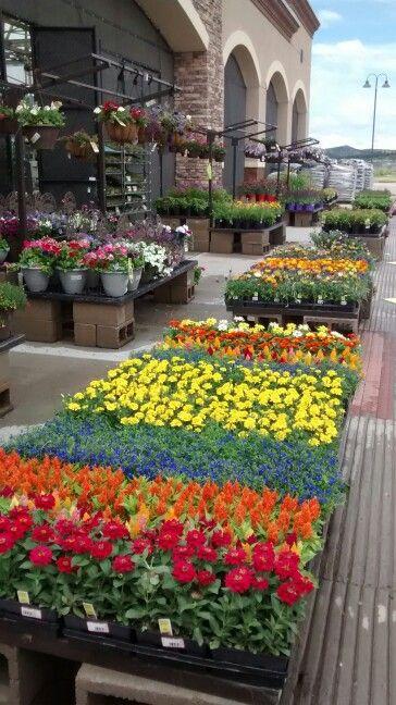 25 Best Ideas About Lowe's Garden Center On Pinterest Door
