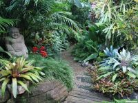 379 best images about Florida landscaping on Pinterest ...