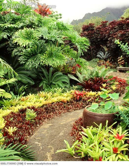1000 hawaiian landscaping