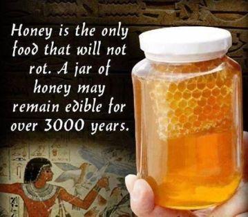 Honey does not spoil