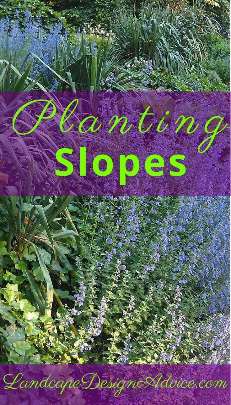 25 Best Ideas About Hillside Landscaping On Pinterest Sloped