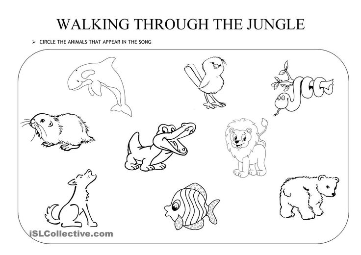 WALKING THROUGH THE JUNGLE. an activity to go with the