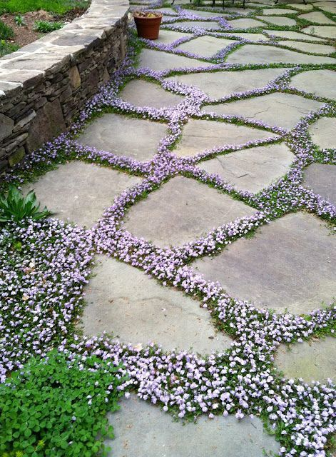 25 Best Ideas About Pathways On Pinterest Garden Path Gravel