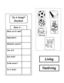 1000+ ideas about Living And Nonliving on Pinterest