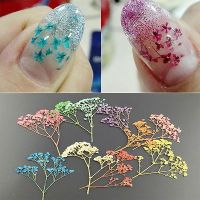 25+ best ideas about Acrylic nail art on Pinterest ...