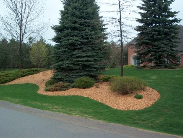 mulched garden with plain