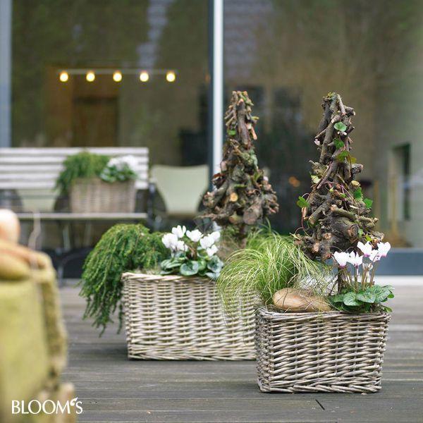 17 Best Images About Herbstdeko On Pinterest Window Boxes Deko