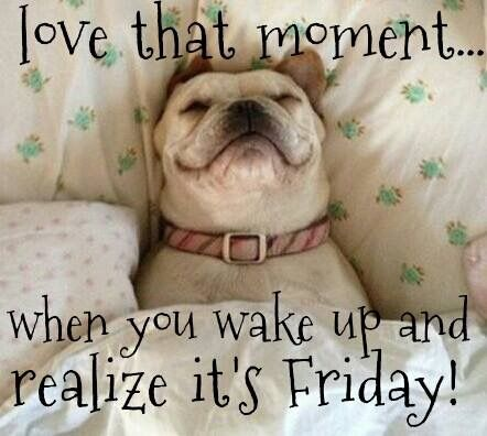 617 best images about Happy Friday!! on Pinterest Friday