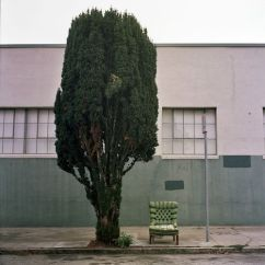 Urban Home Sullivan Sofa Bed Narrow Door 17 Best Images About Topiary Hell Forgive Me On Pinterest ...