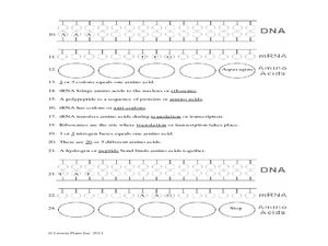 Pictures Protein Synthesis Worksheet Answer Key - Getadating
