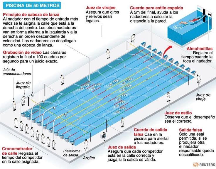 piscina olimpica medidas  Google Search  Coisas para usar  Pinterest  Pesquisa