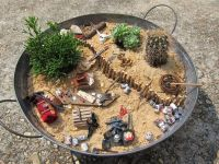 17 Best images about Mini Gardens/Container Gardens/Fairy ...