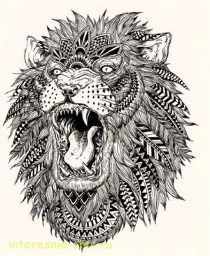 simple patterns draw lion wolf abstract tattoo google sketches illustration vector books
