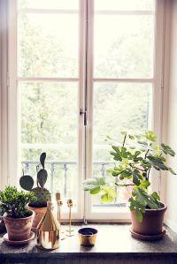 25+ best ideas about Window sill decor on Pinterest ...