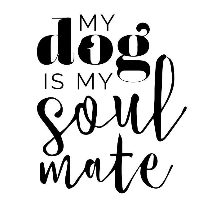 818 best Dog Quotes & Meme images on Pinterest