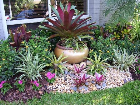 25 Best Ideas About Small Tropical Gardens On Pinterest Small