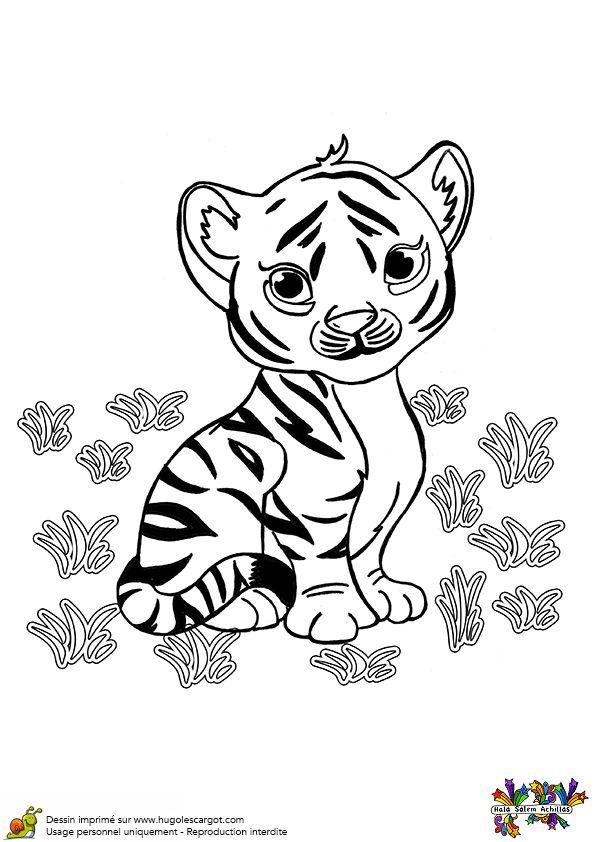 A colorier, un bébé tigre qui a l'air tout triste