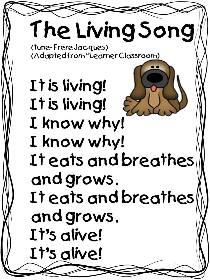 31 best images about grade 1 science: Living and non