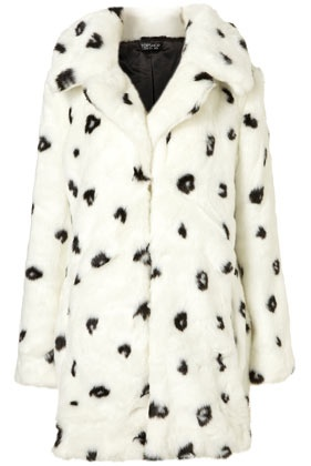 Dalmatian Coat Real