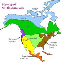 √ Biome Map Coloring Pages 9 And Analysis Worksheet Answers