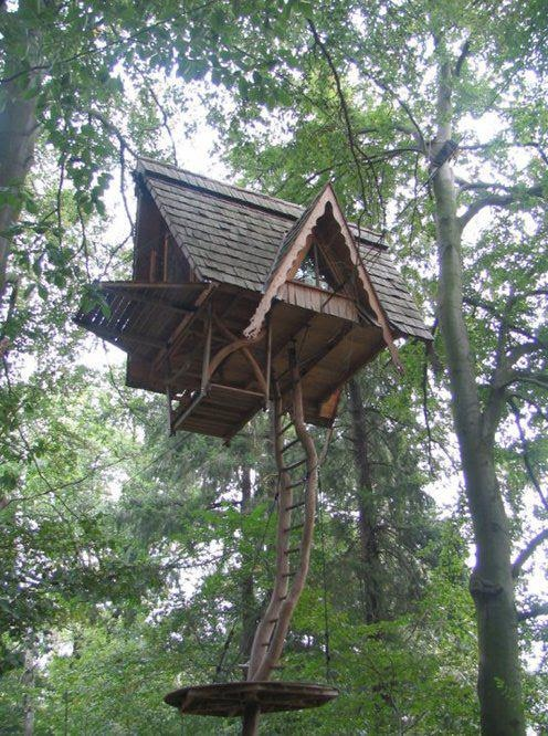 68 Best Images About Treehouses On Pinterest Trees A Tree And