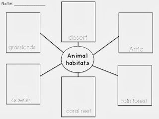 17 Best images about animal characteristics on Pinterest