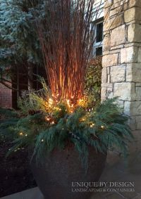 25+ best ideas about Winter container gardening on ...
