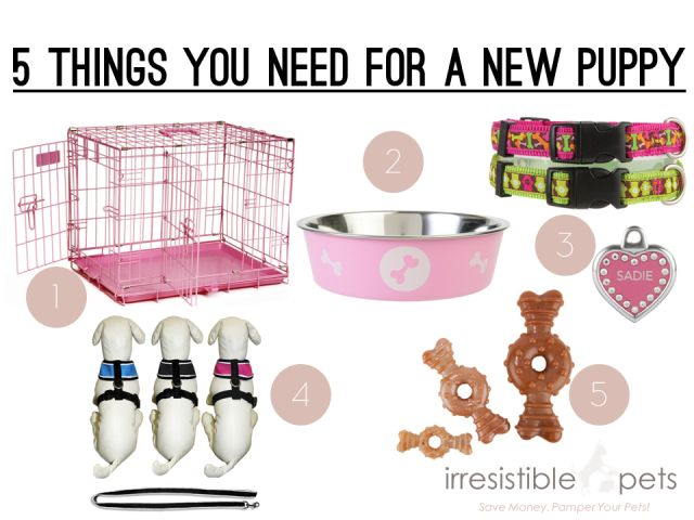 Five Things You Need For A New Puppy Via Irresistiblepets