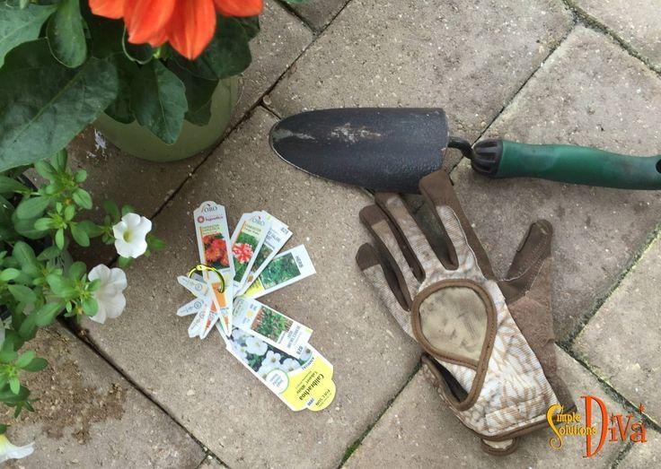663 Best Images About Simple Garden Ideas On Pinterest Gardens