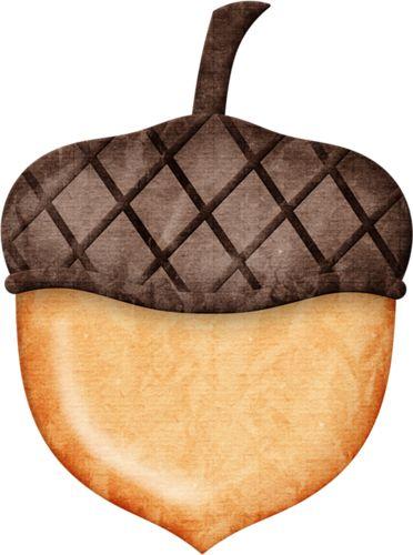 acorn clip