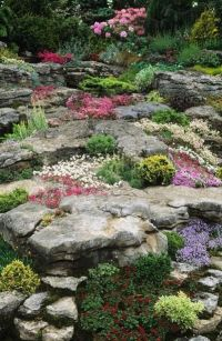 17 Best images about Rock garden ideas on Pinterest ...