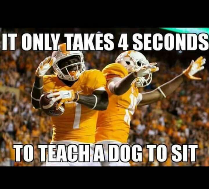 59 best Tennessee Vols  images on Pinterest