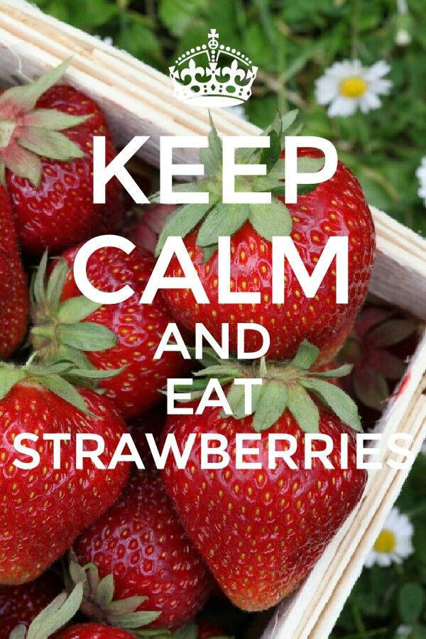 Create Your Own Quote Wallpaper 25 Best Ideas About Keep Calm Funny On Pinterest Keep