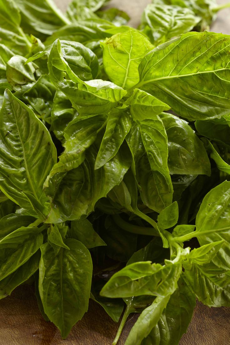 To clean basil I remove the leaves swirl them in a bowl