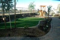 17 Best images about Phoenix Arizona Backyard Landscaping ...