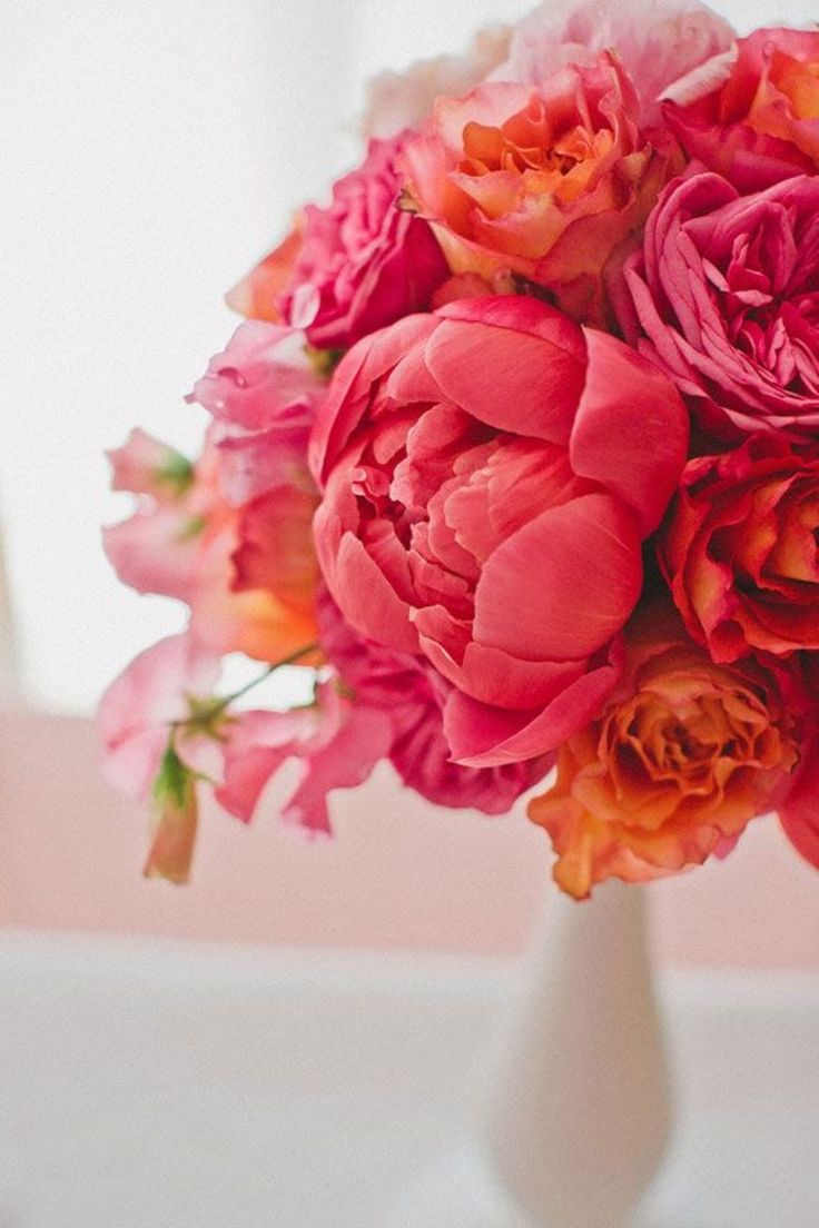 3441 best images about Tierno y delicado on Pinterest  Sweet peas Pink flowers and Ranunculus