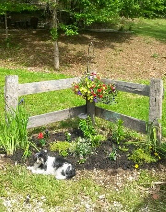 25 Best Ideas About Small Garden Fence On Pinterest Fence