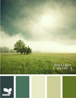 daylight color