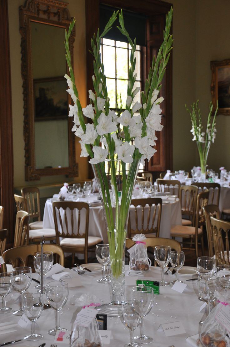 wedding chair covers northampton inexpensive for ideas 17 best about gladiolus on pinterest | centerpiece, ...