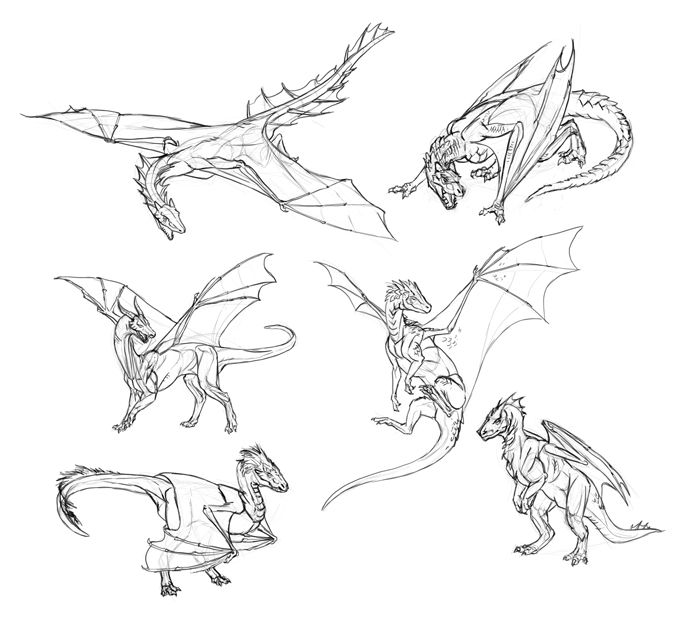 How to Draw Dragons: Step-by-Step Instructions from Tooth