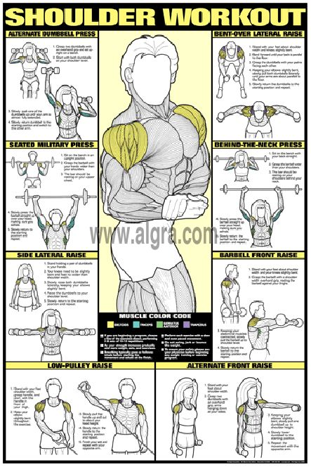 Bruce Algras Shoulder Workout Poste