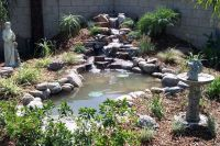 16 Best images about Pond Ideas on Pinterest | Natural ...