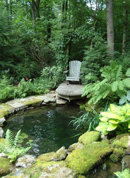 25 Best Ideas About Wooded Backyard Landscape On Pinterest