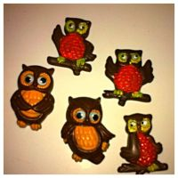 1000+ ideas about Owl Kitchen Decor on Pinterest | Owl ...