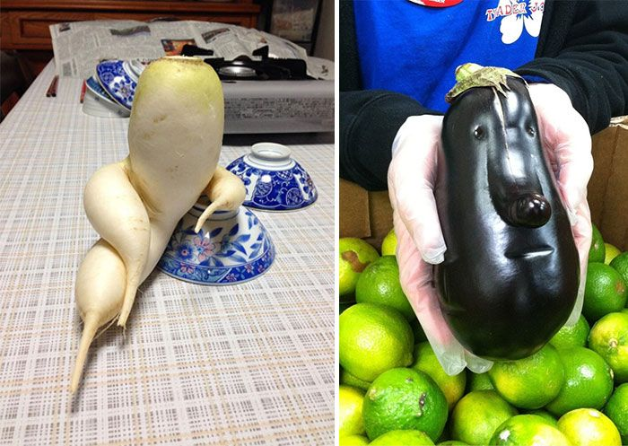 16 Best Images About ODD SHAPED FRUITS Amp VEGETABLES On