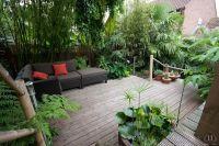 backyard tropical | Different Deck Ideas | Pinterest ...