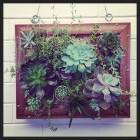 72 best images about Living wall art on Pinterest | Green ...