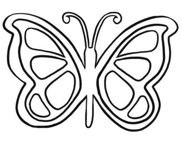 17 Best images about Rovarok, lepkék/Bugs, butterflies on
