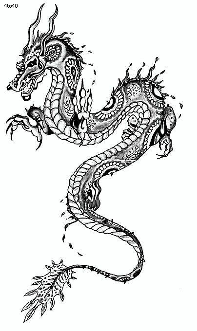 My chinese dragon tattoo ; coming soon! :) Tattoo